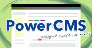 PowerCMSのスニペット・カスタムフィールドを使用して管理画面を見やすくカスタマイズ